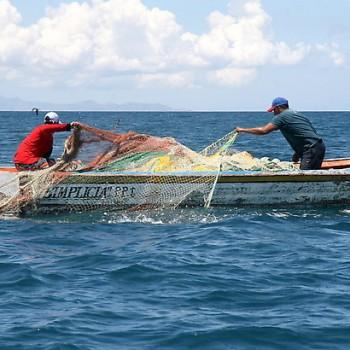 Aliexpress in pesca russa di rete
